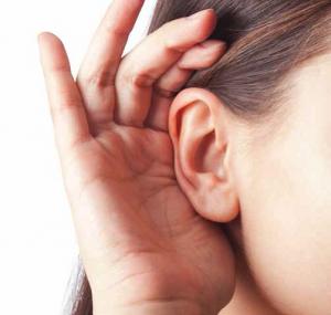 oren gehoor